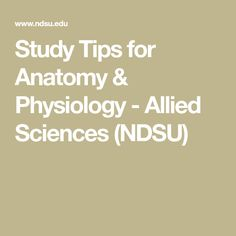 Study Tips for Anatomy & Physiology - Allied Sciences (NDSU)