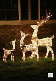 Light Up Reindeer Outdoor Decorations