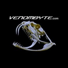 Walkabout Requirement 3 - This site is dedicated to venomous animals.  It is written in non-scientific terms, using plain English, so that adults and kids alike can browse through the site and hopefully learn about some of the venomous creatures featured on the site.