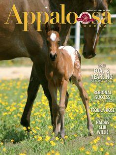 "August 2013 Appaloosa Journal. Spots On My Art,""Andy,"" (Artfully Designed x KF Pure Romance). Photo by Dorinda Burks."