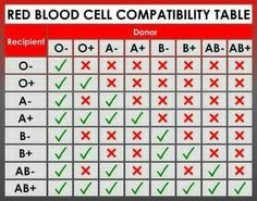 Red blood cell compatability table