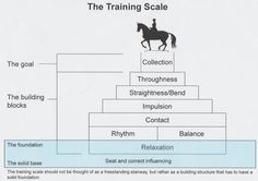french dressage scale of training | Dressage-Training-Scale-e1401105230978.jpg