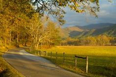 Cades-Cove Free Things To Do in Pigeon Forge Tennessee Vacation Places, Vacation Trips, Vacation Spots, Places To Travel, Places To See, Vacation Ideas, Gatlinburg Vacation, Gatlinburg Tennessee, Tennessee Vacation