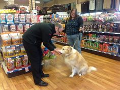 Bring your pets by any Ren's store - lots of treats to be had. Your Pet, Bring It On, Treats, Store, Fun, Life, Sweet Like Candy, Tent, Shop Local