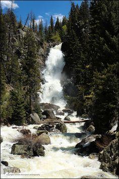 Brown 39 s creek falls ride deer valley ranch horseback for Fishing spots in colorado springs