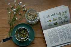 homegrown tea, chamomile
