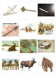 projet préhistoire : mémory autour des animaux de la préhistoire Moose Art, Cycle 2, Montessori, Animals, Teaching, Education, School, Prehistory, Prehistoric Animals