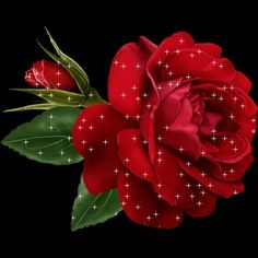 See the sticker une rose rouge belonging to on PicMix. Beautiful Gif, Beautiful Flowers, Red Roses, Pink Flowers, Happy Friendship Day, Blog, Plants, Gifs, Sai Baba