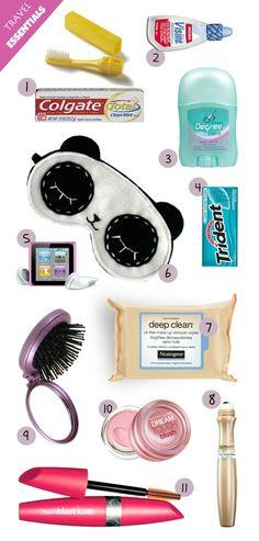 plane Bag Essentials