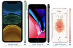Latest Iphone, New Iphone, Iphone Se, Phone Arena, Ios Update, New Ios, New Ipad Pro, Face Id, Apple New