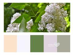 Maison * Home * Suzanne Dufault  White lilac colour inspiration...Spring love!