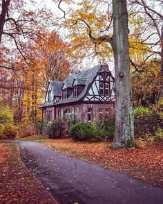 fall scenery Home ~ Tudor cottage Tudor Cottage, Cottage Homes, Cottage Style, Casa Tudor, Casa Estilo Tudor, Beautiful Homes, Beautiful Places, Cute House, My Dream Home