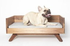 Joey High Back Dog Bed by Pup and Kit