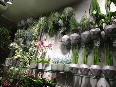 Planter og blomster i hvite og grå vaser.
