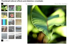 Galleriffic is a jQuery plugin that provides a rich, post-back free experience optimized to handle high volumes of photos while conserving bandwidth.
