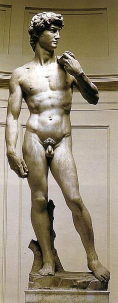 Michaelangelo' s David, my favourite piece of  art in all the world