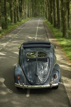 (Large) Enter your pin description here. Beetle, Volkswagen, Vehicles, Car, June Bug, Automobile, Beetles, Autos, Cars