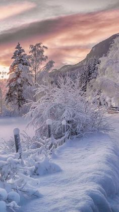 Winter Landschaft