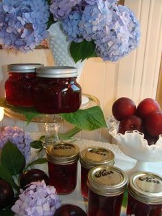 Plum Jam ~ The recipe and step by step instructions come in the box of the Liquid Pectin.  Need to know what to get before I move, as no stores to speak of, there.  There are wild Beach Plum trees on the property and I've been given some locally made Beach Plum preserves...oh, so good!