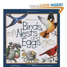 Birds, Nests and Eggs...these beginner field guides look great--there are a bunch of different ones--maybe now the boys and I can learn all about nature together :)