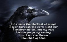 Crows and Ravens--Messengers for the Viking and Celtic gods. Names Reaven and Bram
