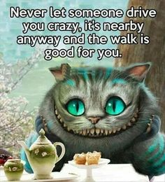 The Cheshire Cat                                                       …                                                                                                                                                                                 More
