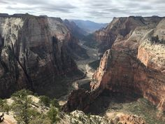 Observation Point Zion National Park [OC] [4032 x 3024] : EarthPorn