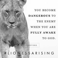 """Lioness, the darkness trembles when you turn your face toward the light. """"Awake, sleeper, and arise from the dead, and Christ will shine on… Bible Verses Quotes, Faith Quotes, Scriptures, Scripture Verses, True Quotes, Lioness Quotes, Lion Of Judah, Daughters Of The King, Gods Grace"""