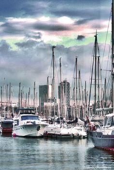 Barca Marina | Toto: Waleed Alawadhi