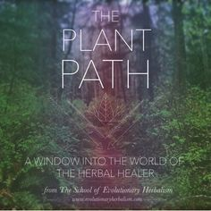 Podcast: The Plant Path by the School of Evolutionary Herbalism