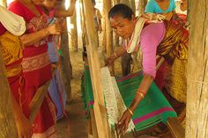 """""""The difference in the lives of these women and their families is evident for all to see."""" Dr. Bhaskar Choudhury, Regional Head, Assam for IFAW-WTI."""