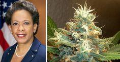 Legalization U.S. Attorney General Admits Marijuana Is Not a Gateway Drug