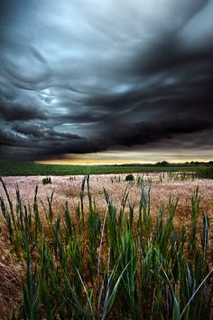 Stormy Weather by Phil Koch - I created the series of Horizons in 2010 as photographic journey through the landscapes of Wisconsin. I rarely shoot in the same location as the sun rises and find the meadows that most just drive by without a second thought as the best place to wait and watch. Click on the image to enlarge.