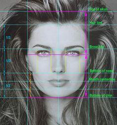 Facial proportions - Jillian de Silva, Centre for Advance Facial Cosmetic and Plastic Surgery Face Proportions Drawing, Facial Proportions, Drawing Heads, Painting & Drawing, Art Drawings, Drawing Faces, Doodle Drawing, Anatomy Drawing, Drawing Techniques