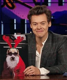 harry trying to keep a straight face was the one thing i didn't know i needed in my life