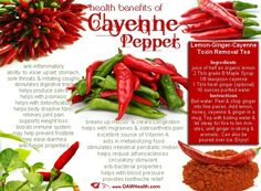 Cayenne pepper has amazing health benefits. Learn how to use cayenne pepper as a natural medicine (research based). Pepper Benefits, Health Tips, Health And Wellness, Nutrition Tips, Nutrition Education, Reduce Appetite, Coconut Health Benefits, Cayenne Peppers, Stop Eating