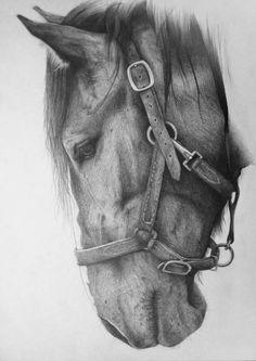 Paul Brian Fine Art - Gallery