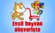 Oyunumuzda ilk olarak evcil hayvanımızı istediğimiz görünüme getiriyoruz. Kazandığımız puanlarla daha sonra alışverişe gidiyoruz. http://www.degisikoyunlar.net/alisveris-oyunlari/evcil-hayvan-alisveriste.html