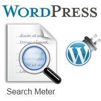 How To Find Out What Your Site Visitors Search For On Your WordPress Blog
