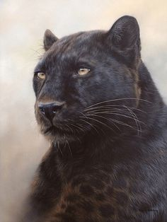 Black panther oil painting by Rachel Stribbling. Professional Painters for Realistic Pet Portrait Commissions.