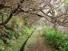 Lombo do Mouro_Pináculo2 by Madeira Islands Tourism, via Flickr