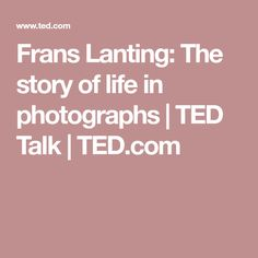 Frans Lanting: The story of life in photographs | TED Talk | TED.com