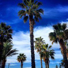 #photographer #travel #fotoğraf #fotografturkiye #gununkaresi #road #visiting #photoshoot #instapassport #myphoto #holiday #turkinstagram #photoart #travelingram #instamood #traveller #photooftheday  #ilovetravel  #igtravel #mytravelgram #adventure #igers #worldtraveler #photo  #go #gezgin #seyahat #instatravel #follow #travelphoto by gezgene