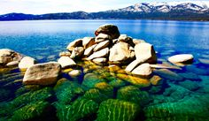 Lake Tahoe by Erin Smith photographer
