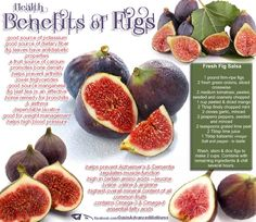 Health Benefits of Figs   Have two planted out back...can hardly wait.  Made strawberry figs preserves last year