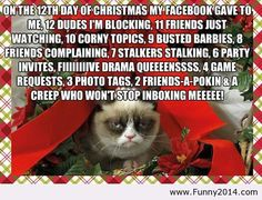 Pics For > Grumpy Cat Christmas Quotes