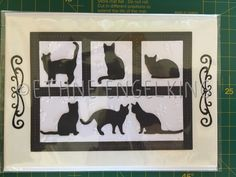 Afbeeldingsresultaat voor elegant unbranded dies from china cards Dog Cards, Bird Cards, Cards Made With Unbranded Dies, Aliexpress Dies Cards, Impression Obsession Cards, Pumpkin Cards, Birthday Cards For Women, Friendship Cards, Animal Cards