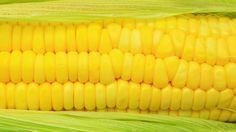 Monsanto's Genetically Modified Corn Is Coming To A Walmart Near You