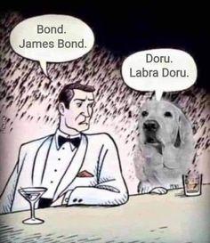James Bond, Memes, Meme