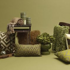Olive Verte Accents